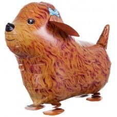 Шар (24''/61 см) Ходячая Фигура, Собака терьер, Коричневый, 1 шт.