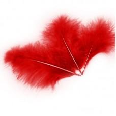 Перья Красные, 13-15 см, 30 шт.